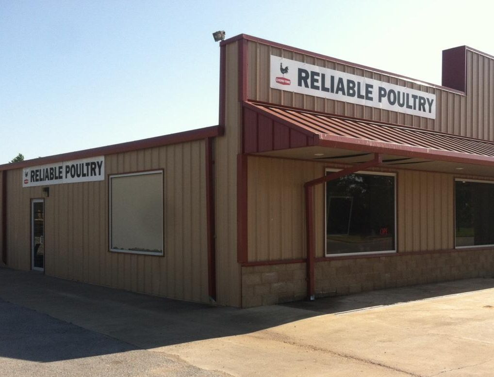 Reliable Poultry Supply - Chore Time