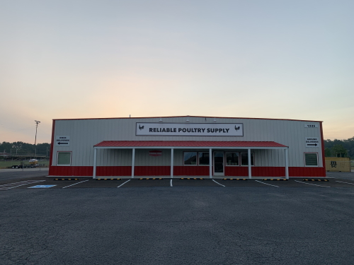 Reliable Poultry Supply
